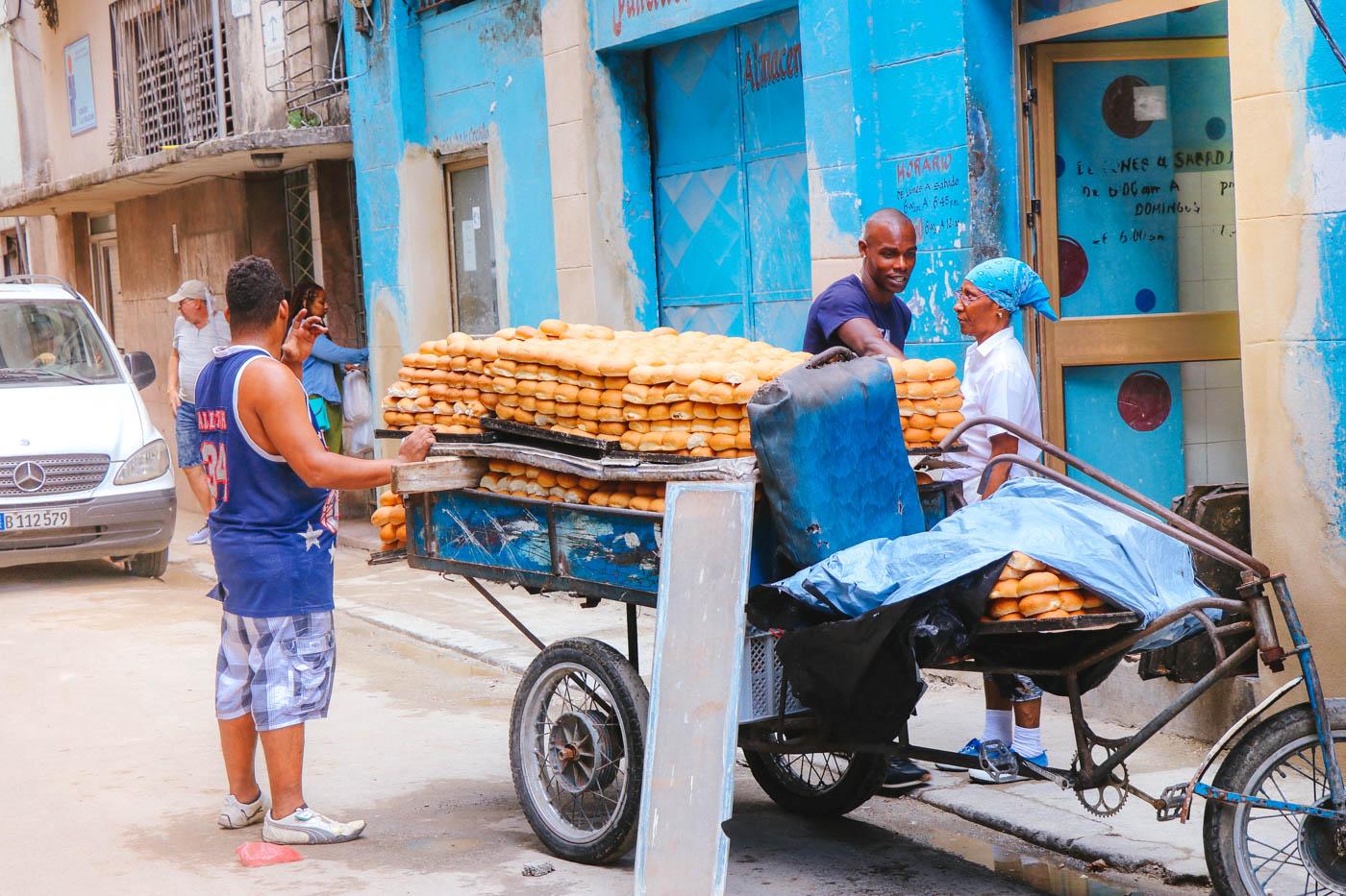 Cuban Bakery